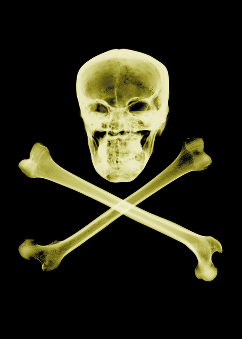 productimage-picture-skull-crossbones-558_jpg_499x1000_q85